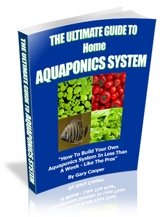 Vegetables faster, easier, better with aquaponics